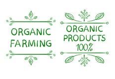 καλλιέργεια οργανική Οργανικά προϊόντα 100 Συρμένα χέρι τυπογραφικά στοιχεία σχεδίου Στοκ Εικόνες