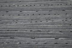 Καλλιέργεια σπαραγγιού Στοκ Φωτογραφίες