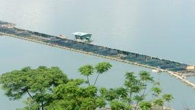 Καλλιέργεια ψαριών, δεξαμενή ψαριών, daklak, Βιετνάμ Στοκ εικόνες με δικαίωμα ελεύθερης χρήσης