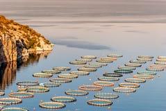 Καλλιέργεια ψαριών κοντά σε Epidaurus, Αργολίδα, Ελλάδα στοκ φωτογραφίες