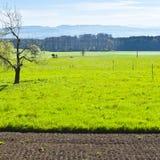 Καλλιεργήσιμο έδαφος και λιβάδια Στοκ εικόνες με δικαίωμα ελεύθερης χρήσης