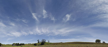 καλλιεργήσιμο έδαφος νέα πανοραμική ευρεία Ζηλανδία Στοκ Φωτογραφία