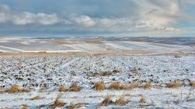 Καλλιεργήσιμο έδαφος που καλύπτεται με το χιόνι Στοκ εικόνα με δικαίωμα ελεύθερης χρήσης