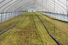 καλλιεργήσιμο γήινο καλό έδαφος ανασκόπησης που οργώνεται Στοκ φωτογραφίες με δικαίωμα ελεύθερης χρήσης