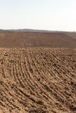 καλλιεργήσιμο πεδίο Οργωμένο γεωργικό καλλιεργήσιμο έδαφος Στοκ Εικόνα