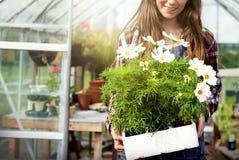 Καλλιεργήστε την εποχιακή έννοια αύξησης φύσης κήπων Στοκ Φωτογραφία