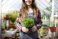 Καλλιεργήστε την εποχιακή έννοια αύξησης φύσης κήπων Στοκ φωτογραφία με δικαίωμα ελεύθερης χρήσης