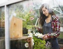 Καλλιεργήστε την εποχιακή έννοια αύξησης φύσης κήπων Στοκ Εικόνες