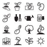 Καλλιεργήστε & το φυτό αυξάνεται τα εικονίδια καθορισμένα Στοκ Εικόνες
