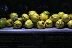 Καλλιεργημένα άγρια μανιτάρια Στοκ εικόνες με δικαίωμα ελεύθερης χρήσης