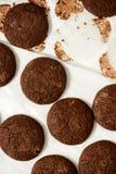 Καλλιεργημένη εικόνα των μπισκότων σοκολάτας σε έναν δίσκο ψησίματος Στοκ εικόνα με δικαίωμα ελεύθερης χρήσης