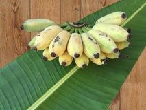 Καλλιεργημένη μπανάνα, ταϊλανδική μπανάνα και πράσινο φύλλο μπανανών Στοκ εικόνα με δικαίωμα ελεύθερης χρήσης