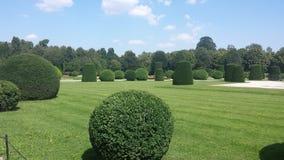 Καλλιεργημένος κήπος στοκ εικόνα με δικαίωμα ελεύθερης χρήσης