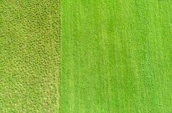 Καλλιεργημένο και ακαλλιέργητο έδαφος Στοκ Φωτογραφία