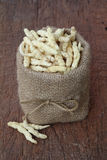 Καλλιεργημένο Cordyceps στοκ φωτογραφία με δικαίωμα ελεύθερης χρήσης