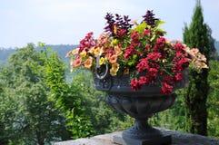 Καλλιεργητής κήπων στοκ φωτογραφία με δικαίωμα ελεύθερης χρήσης