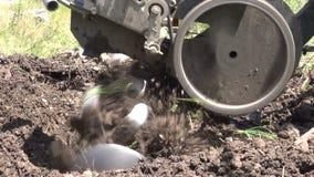 Καλλιεργητής οργώματος απόθεμα βίντεο