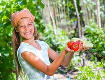 Καλλιεργώντας κορίτσι Στοκ Εικόνα