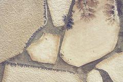 Καλλιτεχνικές συστάσεις Στοκ Φωτογραφίες