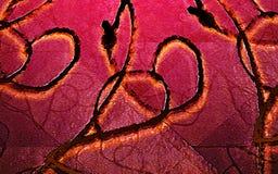 Καλλιτεχνική σύσταση Arabesque Στοκ Εικόνες