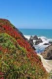 Καλιφόρνια, Ηνωμένες Πολιτείες της Αμερικής, ΗΠΑ στοκ εικόνες