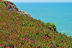 Καλιφόρνια, Ηνωμένες Πολιτείες της Αμερικής, ΗΠΑ στοκ φωτογραφίες