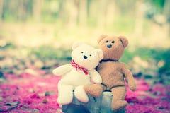 Καλοί teddy καφετής και άσπρος Στοκ Φωτογραφίες