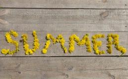 Καλοκαίρι λέξης από τις πικραλίδες στους ξύλινους πίνακες Στοκ Εικόνες