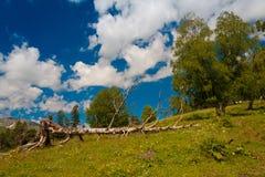 Καλοκαίρι ημέρας βουνών Στοκ Φωτογραφίες