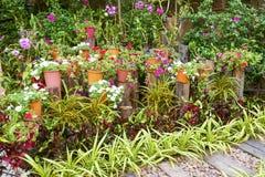καλοκαίρι κήπων Στοκ Εικόνα