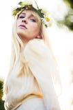 καλοκαίρι νεράιδων Στοκ φωτογραφίες με δικαίωμα ελεύθερης χρήσης