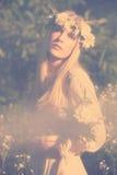 καλοκαίρι νεράιδων Στοκ εικόνες με δικαίωμα ελεύθερης χρήσης