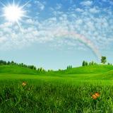 Καλοκαίρι ομορφιάς. απεικόνιση αποθεμάτων