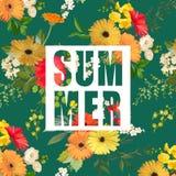 Καλοκαίρι λουλουδιών και φύλλων γραφικό φως λουλουδιών ανασκόπησης playnig ελεύθερη απεικόνιση δικαιώματος