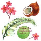 Καλοκαίρι παραδείσου στο διανυσματικό σύνολο απεικόνισης watercolor Στοκ Εικόνα