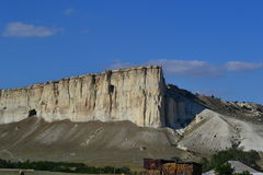 καλοκαίρι πεύκων 2008 της Κριμαίας βουνών Στοκ εικόνα με δικαίωμα ελεύθερης χρήσης