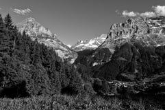 Καλοκαίρι στα ελβετικά βουνά - Άλπεις Bernese Στοκ Φωτογραφίες
