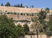 Καλοκαίρι στην Ιερουσαλήμ, Ισραήλ Στοκ φωτογραφίες με δικαίωμα ελεύθερης χρήσης