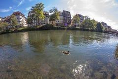 Καλοκαίρι Στρασβούργο στο φακό ψάρι-ματιών Στοκ φωτογραφία με δικαίωμα ελεύθερης χρήσης