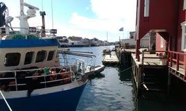 καλοκαίρι της Νορβηγίας Στοκ φωτογραφίες με δικαίωμα ελεύθερης χρήσης