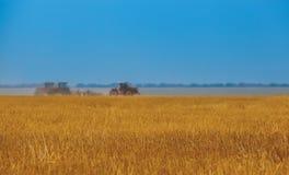 Καλοκαίρι τρία τα τρακτέρ που οργώνουν, οργώνουν το χώμα στην κλίση, cornfield Στοκ Εικόνα