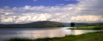καλοκαίρι φύσης τοπίων dombai Καύκασου Στοκ φωτογραφίες με δικαίωμα ελεύθερης χρήσης