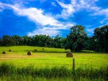 Καλοκαίρι στοκ εικόνες με δικαίωμα ελεύθερης χρήσης