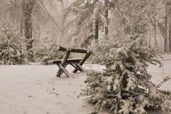καλυμμένα όρη σπιτιών ελβετικά χειμερινά δάση χιονιού σκηνής μικρά Στοκ εικόνα με δικαίωμα ελεύθερης χρήσης