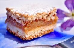 καλυμμένες φέτες ζελατίνας κέικ μήλων Στοκ φωτογραφίες με δικαίωμα ελεύθερης χρήσης
