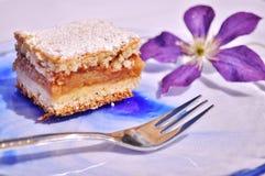 καλυμμένες φέτες ζελατίνας κέικ μήλων Στοκ Φωτογραφία