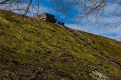 Καλυμμένη βρύο στέγη στοκ φωτογραφία με δικαίωμα ελεύθερης χρήσης