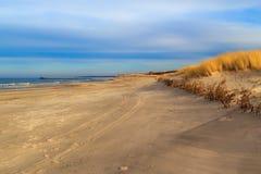 Καλυμμένη η χλόη θάλασσα της Βαλτικής ακτών αμμόλοφων Στοκ φωτογραφίες με δικαίωμα ελεύθερης χρήσης