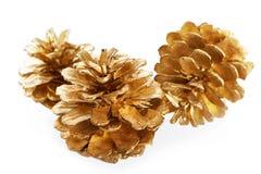 Καλυμμένη χρυσός μακροεντολή κώνων πεύκων που απομονώνεται Στοκ φωτογραφίες με δικαίωμα ελεύθερης χρήσης