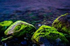καλυμμένοι βράχοι βρύου Στοκ εικόνα με δικαίωμα ελεύθερης χρήσης